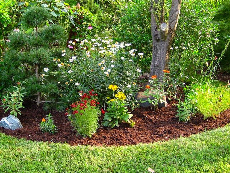 Woodbark & Mulch